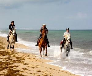 randonnee equestre portugal