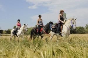 rando cheval espagne