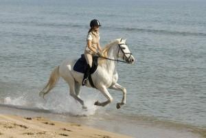 voyage a cheval espagne