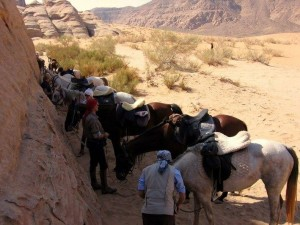 randonnee a cheval en jordanie