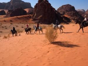rando cheval wadi rum