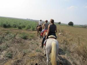 rando cheval toscane