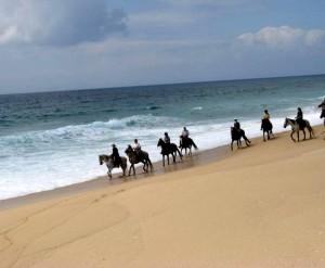 portugal a cheval