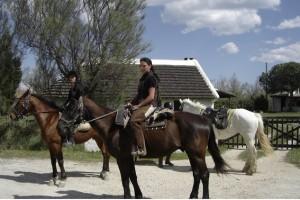 stage equitation camargue
