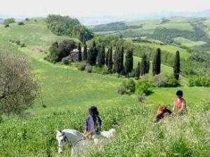 Randonnée en Provence à cheval , à pied , à vélo