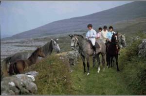 stage equitation en irlande