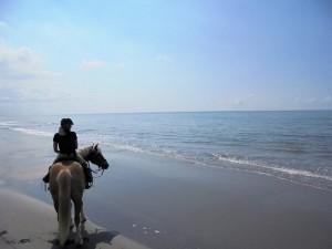 rando a cheval camargue