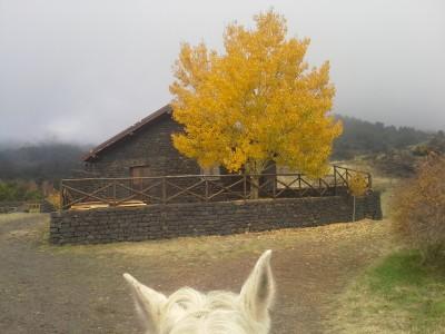 randonnee a cheval en italie
