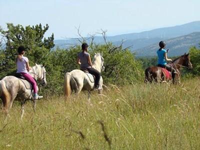 Voyage à cheval en Croatie Dalmatie
