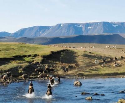 rando a cheval en islande
