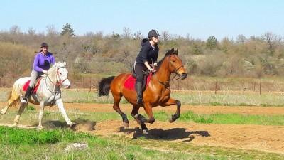 randonnee a cheval croatie