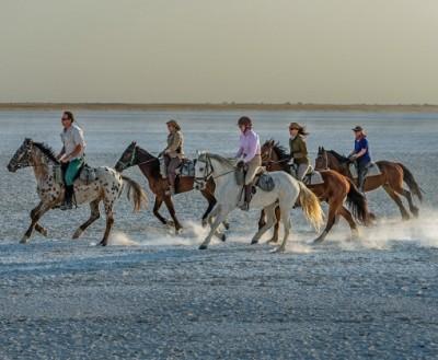 safari a cheval dans le kalahari