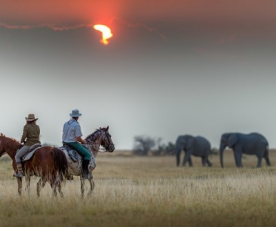 randonnnee equestre botswana