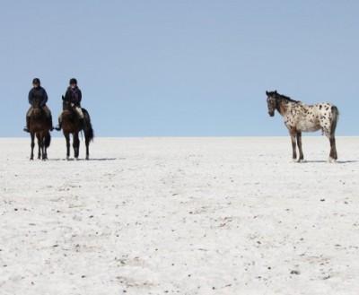 rando equestre botswana