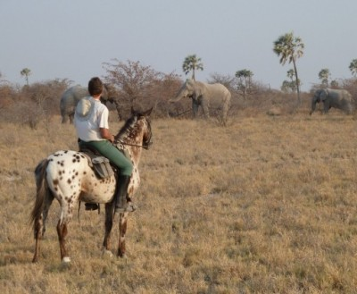 equitation safari kalahari