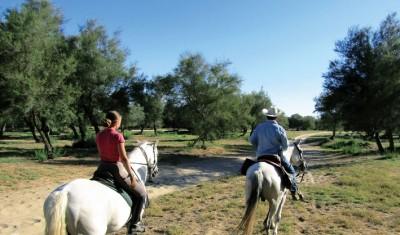 andalousie a cheval