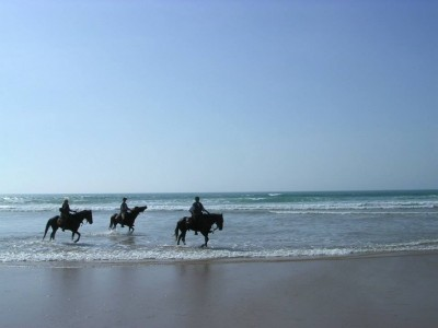 rando cheval maroc