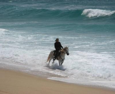 trek a cheval portugal