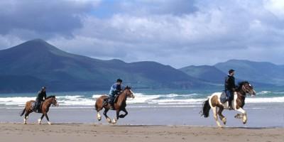 irlande a cheval