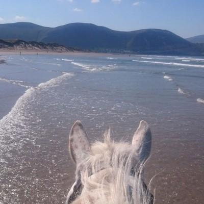rando a cheval irlande
