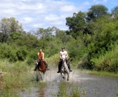 faire un safari a cheval