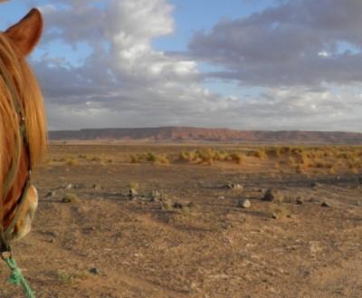 randonnee a cheval desert maroc