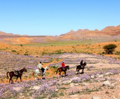 desert marocain a cheval