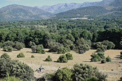 Trail Ride in SPAIN - Inn to Inn Horseback Trip : THE SIERRA DE GREDOS & CASTLES