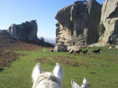 rando cheval sicile