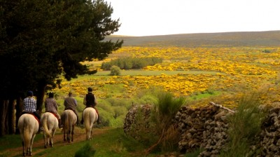 horseback riding trail ride in spain