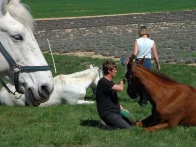 randonnee a cheval en provence