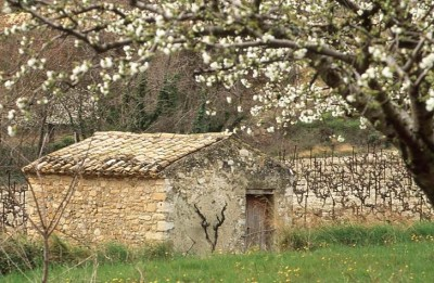 provence a cheval
