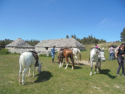 randonnee a cheval haute provence