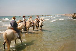 rando equestre camargue