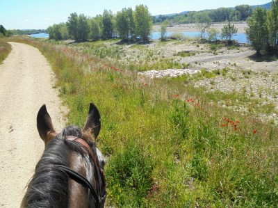 stage equestre luberon