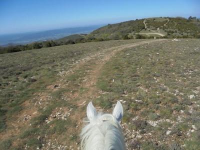randonnee a cheval mont ventoux