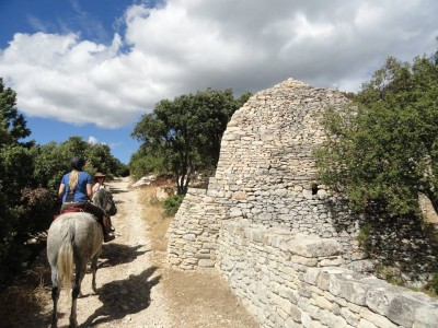 horse riding in provence