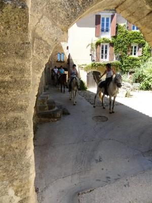 provence horse holiday