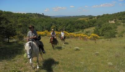 provence horseback trail ride