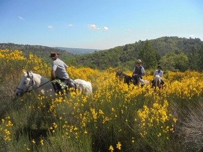 provence riding holiday