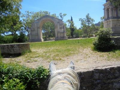 Randonnée à cheval PROVENCE : LUBERON - ALPILLES - CAMARGUE