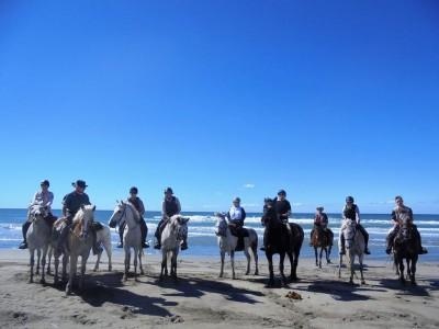 a cheval sur les plages de camargue