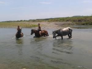 week end randonnee equestre dans le luberon