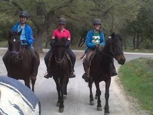 randonnee equestre provence