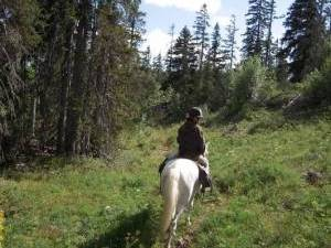 rando cheval vercors