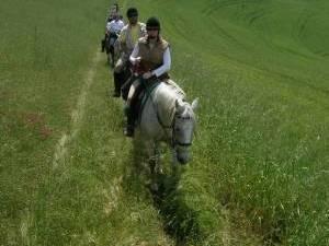 randonnee a cheval toscane