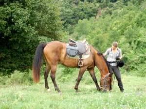 randonnee equestre en catalogne
