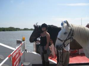 week end a cheval en camargue