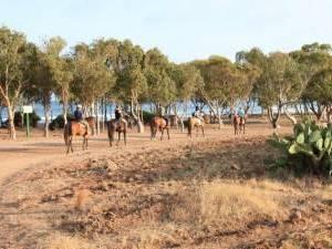 randonnee equestre andalousie