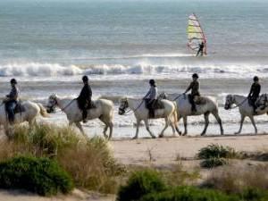 randonnee equestre en camargue